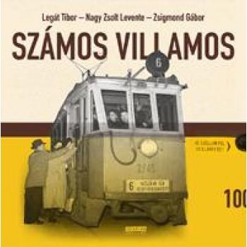 SZÁMOS VILLAMOS (2010)