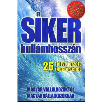 A SIKER HULLÁMHOSSZÁN (2013)