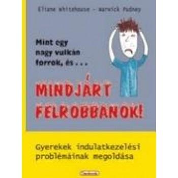 MINT EGY NAGY VULKÁN FORROK, ÉS... MINDJÁRT FELROBBANOK! (2013)
