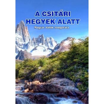 A CSITÁRI HEGYEK ALATT - ZONGORA KOTTA (2014)