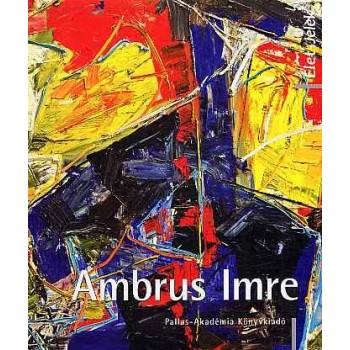 AMBRUS IMRE (2013)